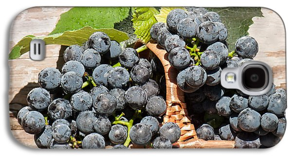 Concord Grapes Galaxy S4 Cases - Grapes And Leaves In Basket Galaxy S4 Case by Len Romanick