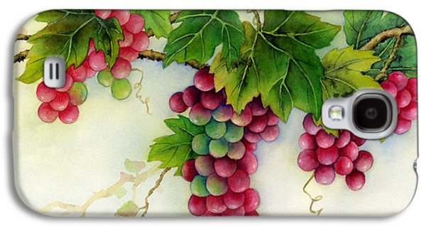 Harvest Art Galaxy S4 Cases - Grapes Galaxy S4 Case by Hailey E Herrera