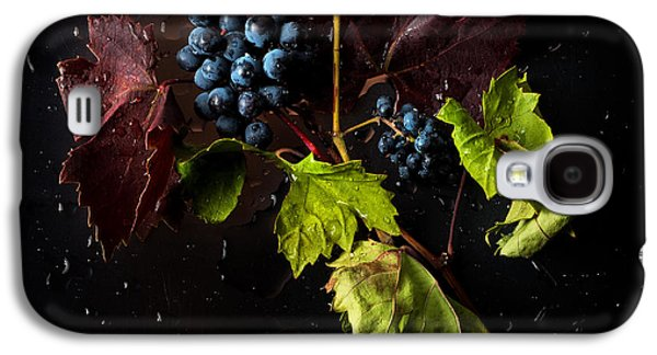Earth Tones Photographs Galaxy S4 Cases - Grapes Galaxy S4 Case by Ivan Vukelic