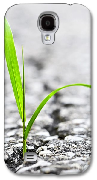 Grass In Asphalt Galaxy S4 Case by Elena Elisseeva