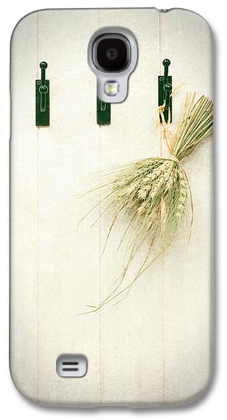 Shed Galaxy S4 Cases - Grasses Galaxy S4 Case by Amanda And Christopher Elwell