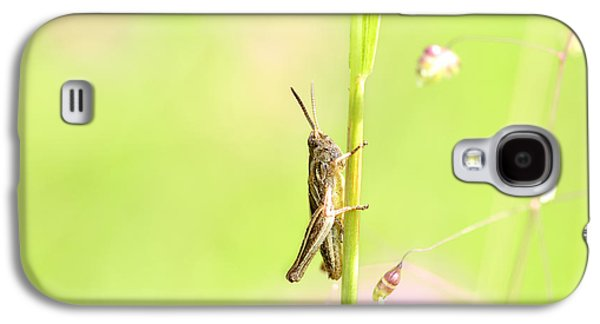 Copy Mixed Media Galaxy S4 Cases - Grasshopper  Galaxy S4 Case by Toppart Sweden