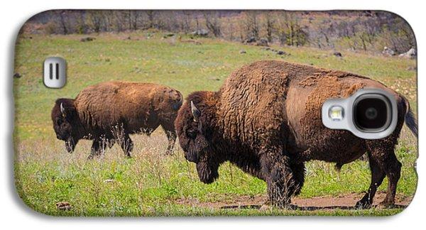 Wildlife Refuge. Galaxy S4 Cases - Grazing Bison Galaxy S4 Case by Inge Johnsson