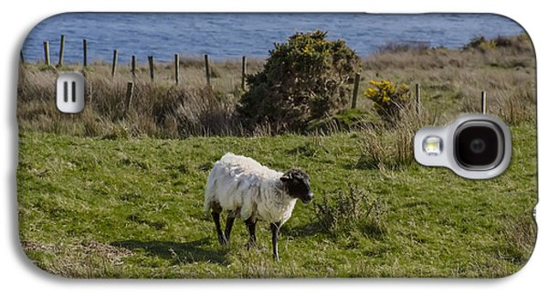 Sheep Digital Art Galaxy S4 Cases - Grazing by the Sea Galaxy S4 Case by Bill Cannon