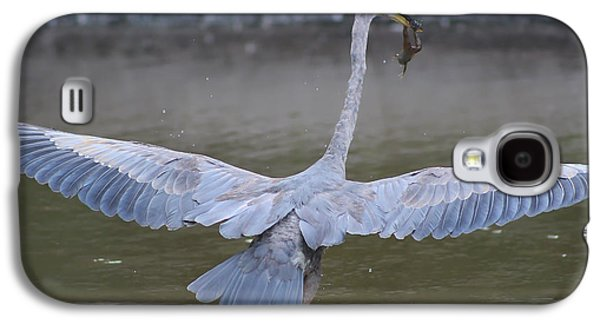 Flying Frog Galaxy S4 Cases - Great Blue Heron Inflight with Frog Galaxy S4 Case by DJE  Photography