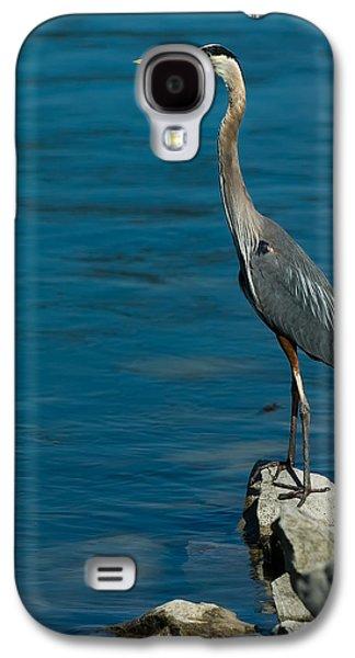 Great Blue Heron Galaxy S4 Case by Sebastian Musial