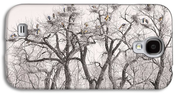 Landscape Acrylic Prints Galaxy S4 Cases - Great Blue Herons Colonies  Galaxy S4 Case by James BO  Insogna