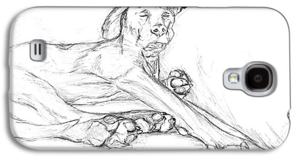 Boxer Drawings Galaxy S4 Cases - Great Dane Dog Sketch Bella Galaxy S4 Case by Stacey May