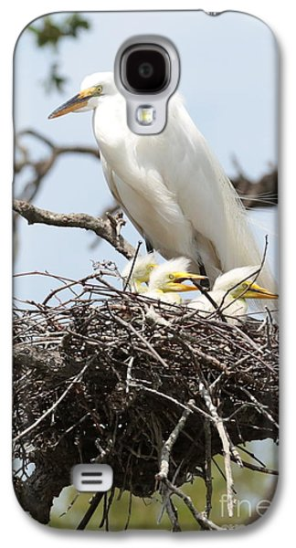 Three Chicks Galaxy S4 Cases - Great Egret Nest with Chicks and Mama Galaxy S4 Case by Carol Groenen