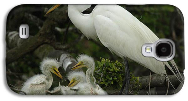 Young Birds Galaxy S4 Cases - Great Egret With Young Galaxy S4 Case by Bob Christopher