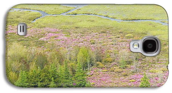 Maine Meadow Galaxy S4 Cases - Great Meadow Flowers Blooming In Acadia National Park Galaxy S4 Case by Keith Webber Jr