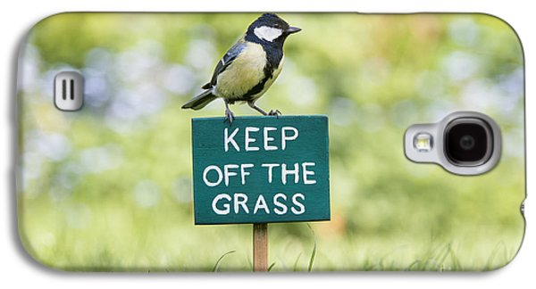 Great Birds Galaxy S4 Cases - Great Tit on a Keep Off The Grass Sign Galaxy S4 Case by Tim Gainey