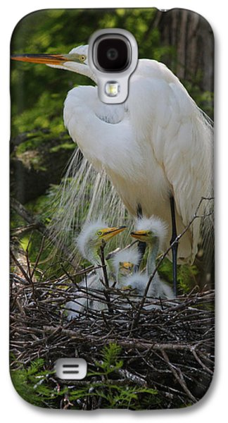 Young Birds Galaxy S4 Cases - Great White Egret Mom and Chicks Galaxy S4 Case by Suzanne Gaff