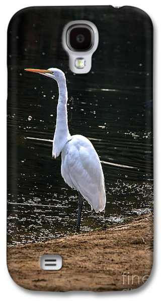 Great White Egret Galaxy S4 Case by Robert Bales