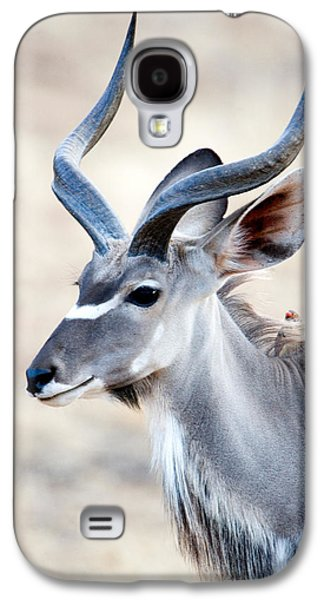 Reserve Galaxy S4 Cases - Greater Kudu Tragelaphus Strepsiceros Galaxy S4 Case by Panoramic Images
