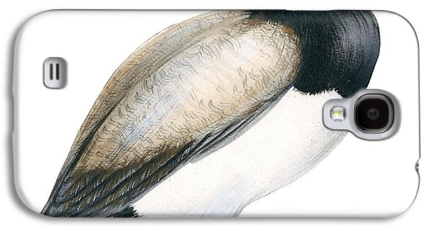 Aquatic Drawings Galaxy S4 Cases - Greater scaup Galaxy S4 Case by Anonymous