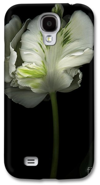 Recently Sold -  - Studio Photographs Galaxy S4 Cases - Green and White Parrot Tulip Galaxy S4 Case by Oscar Gutierrez