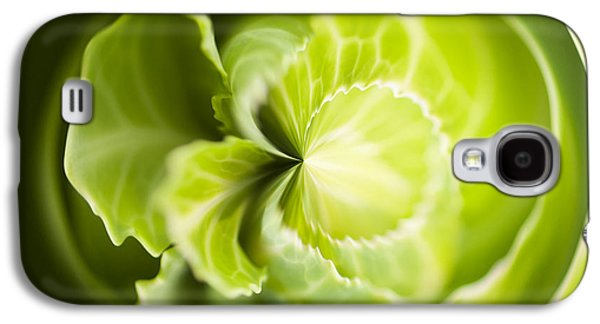 Green Cabbage Orb Galaxy S4 Case by Anne Gilbert