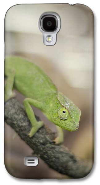 Chameleon Galaxy S4 Cases - Green Chameleon Galaxy S4 Case by Heather Applegate