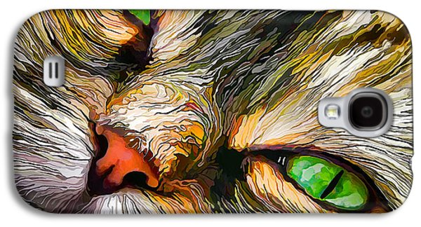 Bill Caldwell Galaxy S4 Cases - Green-Eyed Tortie Galaxy S4 Case by Bill Caldwell -        ABeautifulSky Photography