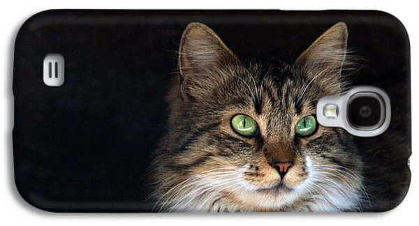 Studio Photographs Galaxy S4 Cases - Green Eyes Galaxy S4 Case by Stylianos Kleanthous
