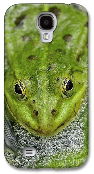 Alga Galaxy S4 Cases - Green Frog Galaxy S4 Case by Matthias Hauser