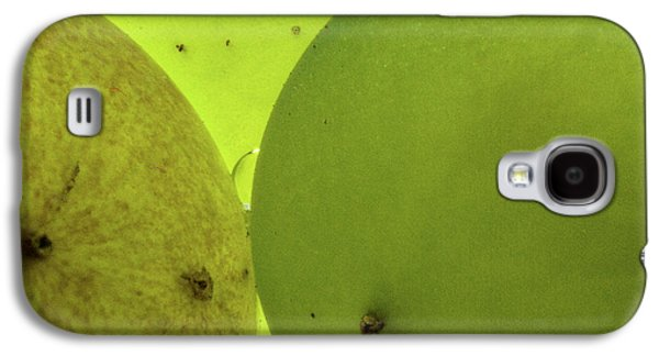 Vintner Galaxy S4 Cases - Green Grape Close up Galaxy S4 Case by Jean Noren