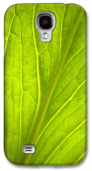 Nature Abstract Galaxy S4 Cases - Green Leaf Nature Abstract Galaxy S4 Case by Christina Rollo