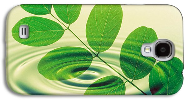 Nature Abstracts Galaxy S4 Cases - Green Leafy Branch Superimposed Galaxy S4 Case by Panoramic Images