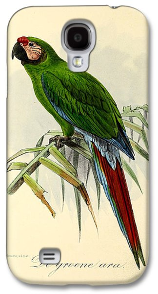 Ornithology Paintings Galaxy S4 Cases - Green Parrot Galaxy S4 Case by J G Keulemans