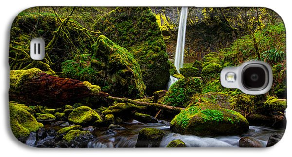 Waterscape Galaxy S4 Cases - Green Seasons Galaxy S4 Case by Chad Dutson