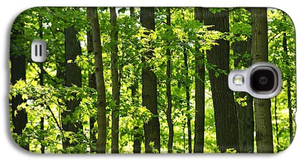 Green Spring Forest Galaxy S4 Case by Elena Elisseeva