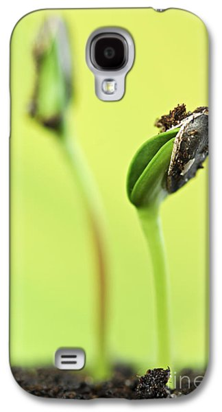 Green Sprouts Galaxy S4 Case by Elena Elisseeva