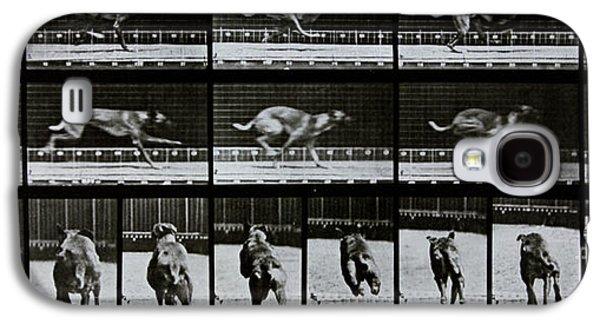 Sprint Galaxy S4 Cases - Greyhound running Galaxy S4 Case by Eadweard Muybridge