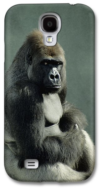 Contemplative Photographs Galaxy S4 Cases - G&r.grambo, Mm-52-15 Lowland Gorilla Galaxy S4 Case by Rebecca Grambo
