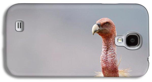 Griffon Vulture Galaxy S4 Case by Dr P. Marazzi