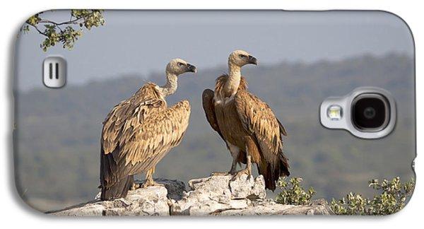 Griffon Vulture Pair Extremadura Spain Galaxy S4 Case by Gerard de Hoog