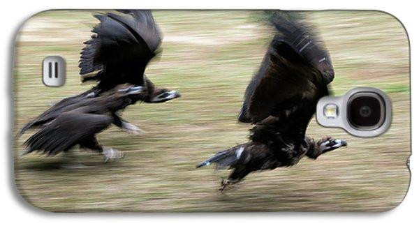Griffon Vultures Taking Off Galaxy S4 Case by Pan Xunbin