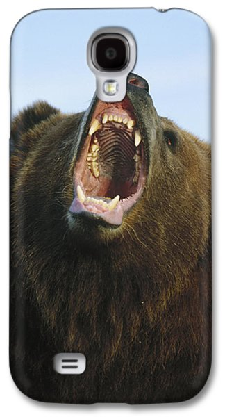 Growling Galaxy S4 Cases - Grizzly Bear Close Up Of Growling Face Galaxy S4 Case by Konrad Wothe