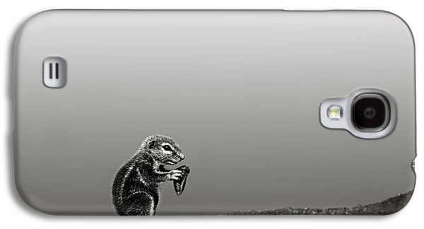 Small Photographs Galaxy S4 Cases - Ground squirrel Galaxy S4 Case by Johan Swanepoel