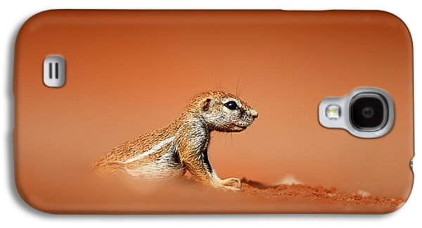 Small Photographs Galaxy S4 Cases - Ground squirrel on red desert sand Galaxy S4 Case by Johan Swanepoel