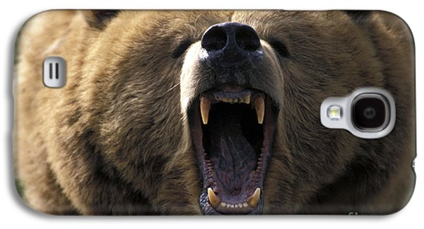 Growling Galaxy S4 Cases - Growling Grizzly Bear Galaxy S4 Case by Mark Newman