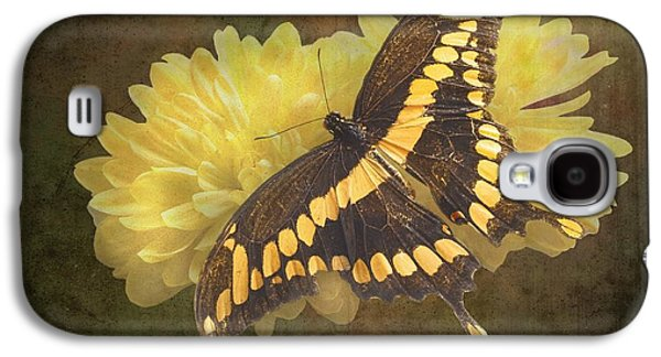 Earth Tones Photographs Galaxy S4 Cases - Grunge Giant Swallowtail-1 Galaxy S4 Case by Rudy Umans