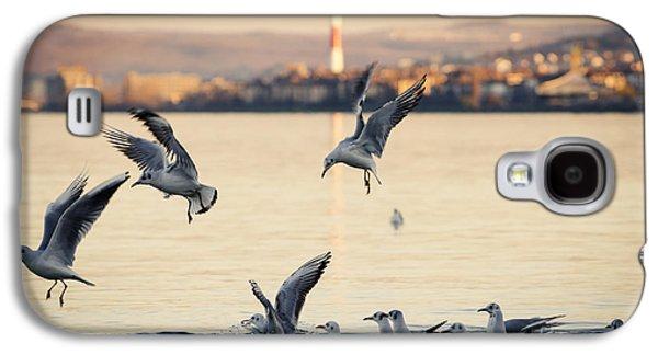 Animal Pyrography Galaxy S4 Cases - Gulls Galaxy S4 Case by Jelena Jovanovic