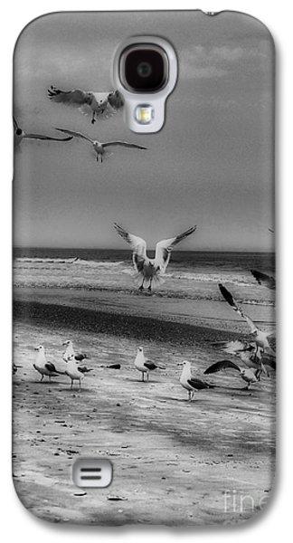 Photos Of Birds Galaxy S4 Cases - Gulls Galaxy S4 Case by Skip Willits