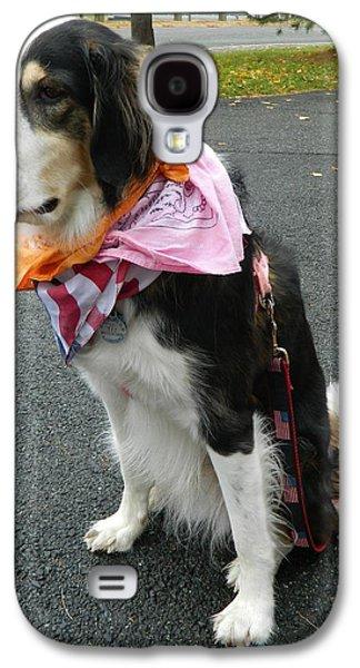 Dog Framed Prints Digital Art Galaxy S4 Cases - Haley The Wonder Dog Galaxy S4 Case by Emmy Marie Vickers
