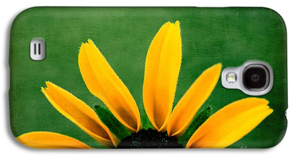 Aimelle Galaxy S4 Cases - Half Sun - s02ct01 Galaxy S4 Case by Variance Collections