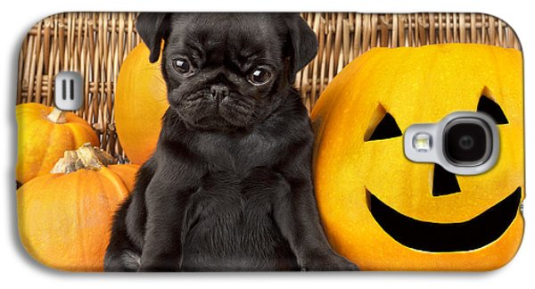 Puppies Galaxy S4 Cases - Halloween Pug Galaxy S4 Case by Greg Cuddiford