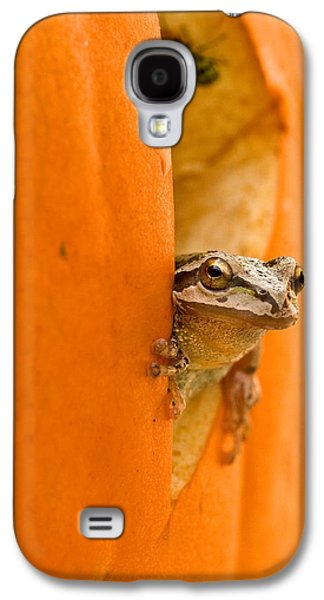 Anurans Galaxy S4 Cases - Halloween surprise  Galaxy S4 Case by Jean Noren