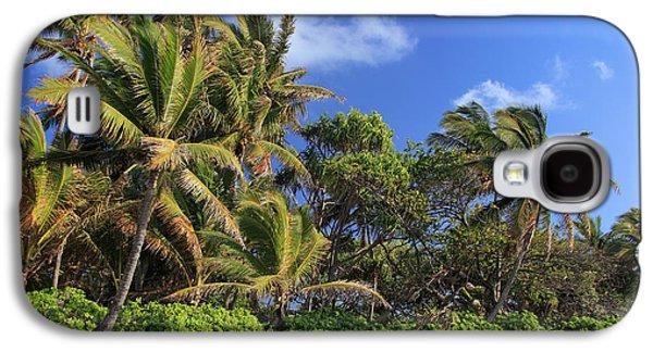 Splashy Photographs Galaxy S4 Cases - Hana Palm Tree Grove Galaxy S4 Case by Inge Johnsson